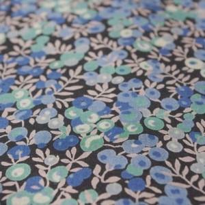 Japan - wiltshire bleu